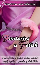 Book Cover for Fantasies in Fetish (by KinkyWriter)