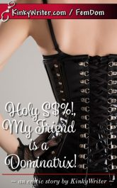 Book Cover for Holy S$%!, My Friend is a Dominatrix! (by KinkyWriter)