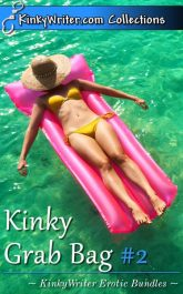 Book Cover for Kinky Grab Bag #2 (by KinkyWriter)