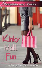 Book Cover for Kinky Mall Fun (by KinkyWriter)