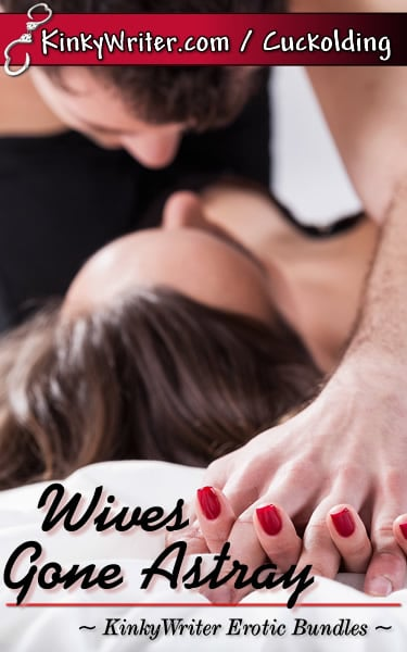 Book Cover for Wives Gone Astray (by KinkyWriter)