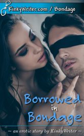 Book Cover for Borrowed in Bondage (by KinkyWriter)